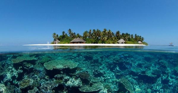 Pourquoi les Maldives
