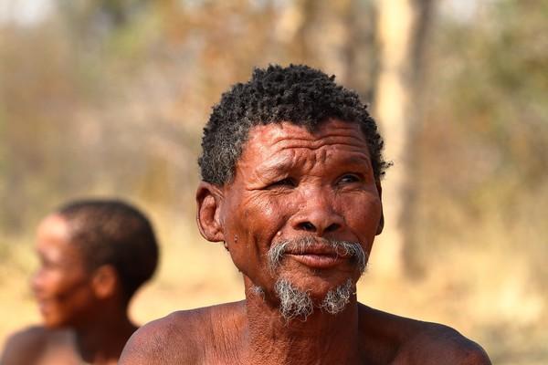 Pourquoi voyager en Namibie