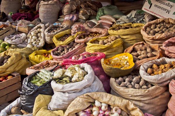 Bolivie Voyage grande variété de pommes de terre
