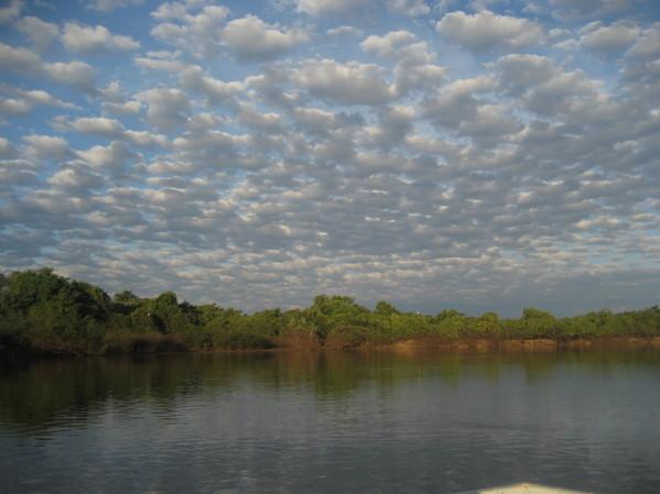 Brésil voyage Pantanal rivière