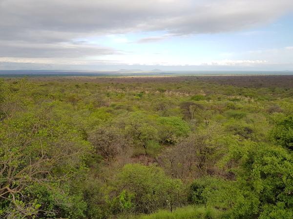 voyage afrique tanzanie tarangire