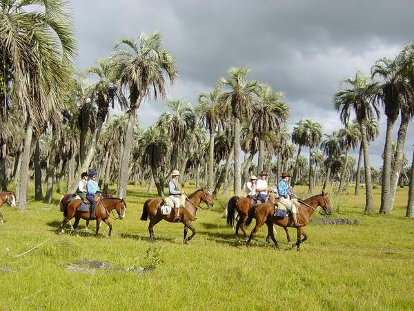 Uruguay Voyage à cheval entre palmiers