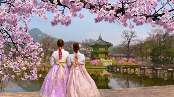 Quand partir en Corée du Sud