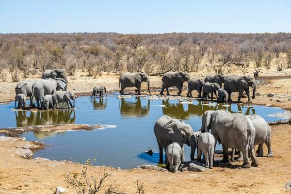 Quand partir en Namibie