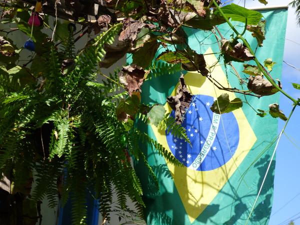 Brésil Voyage drapeau