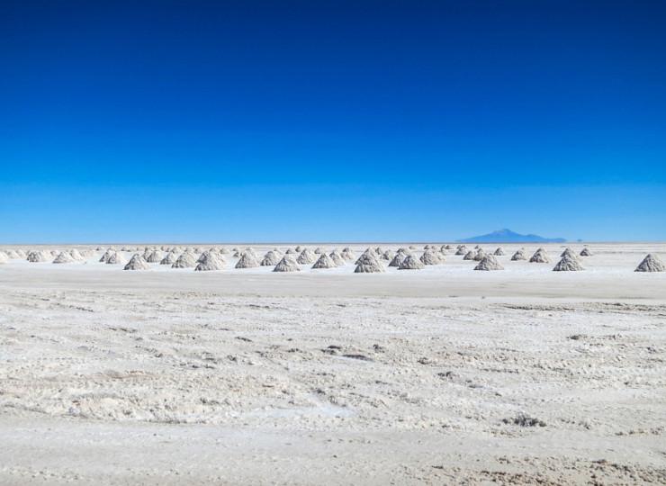 Atacama : quand le désert fleurit !