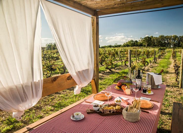 Uruguay Voyage Carmelo winetour