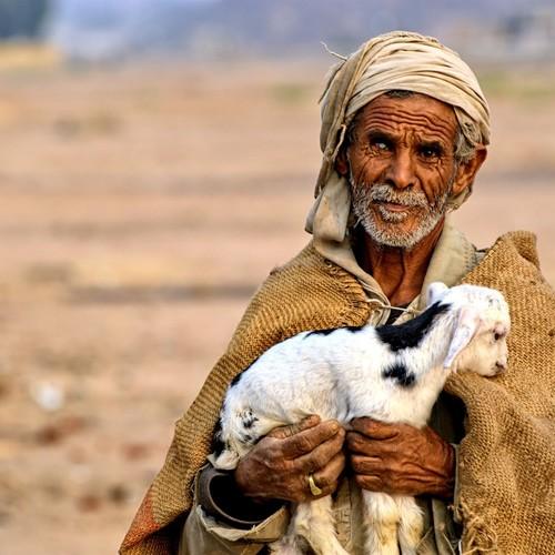 voyage-egypte-bedouin