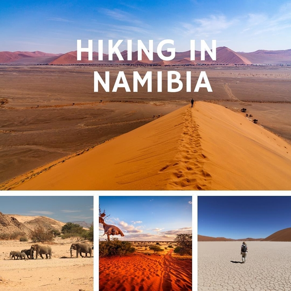 [ INSPIRATION ✨🥾🌍 ] Walking across breathtaking landscapes ! ⠀ Namibia is an absolute destination for hiking : ⠀ ⠀ ⠀ 🦒Etendeka Reserve 🦓 NamibRand Reserve 🐘 Waterberg National Park Come to #namibia for an unforgettable experience ! ⠀#hiking #africa #safari #nature #discovery #explore #travel #keepexploring #traveltheworld #travelwithadgentes
