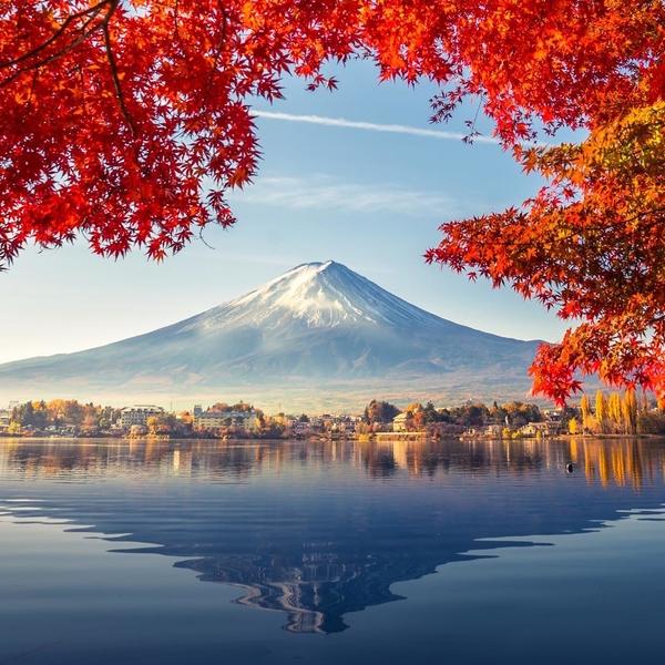 [ DÉCOUVERTE ] 🔎✨ ⠀ Partez à la découverte du Mont Fuji ! ⠀Classé au Patrimoine Mondial de l'Humanité par l'UNESCO et avec ses 3776m d'altitude, ce volcan est aujourd'hui un des plus grands symboles du Japon 🇯🇵 🌊 ⠀ Ne manquez pas cette étape incontournable pour vous relaxer dans une source chaude et goûter à l'hospitalité japonaise d'un logement traditionnel.👘 #montfuji  #japon #onsen  #ryokan #kawaguchiko #hakone #traveltheworld #nature #momiji #keepexploring #relax #kayaking #travelwithadgentes