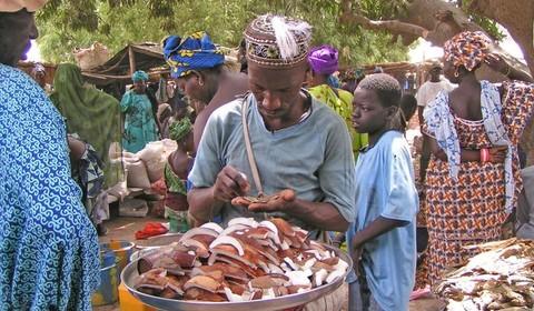 Marché de Sokone - Bambougar