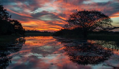 Pantanal - Ilheús - Péninsule de Maraú