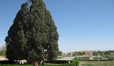 Yazd - Chiraz