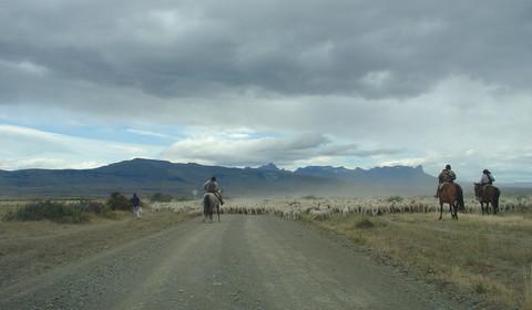 Nibepo Aike - Torres del Paine (330 km // 6 à 7 heures)