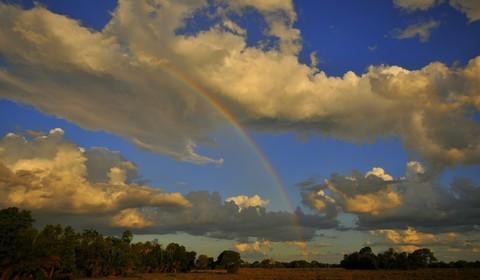 Départ Pantanal