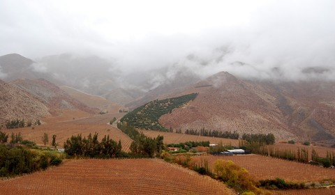 La Serena - Pisco Elqui