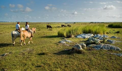 Aguaverde Lodge - Estancia Vik,  cheval