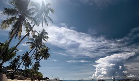 Cebu - Bohol