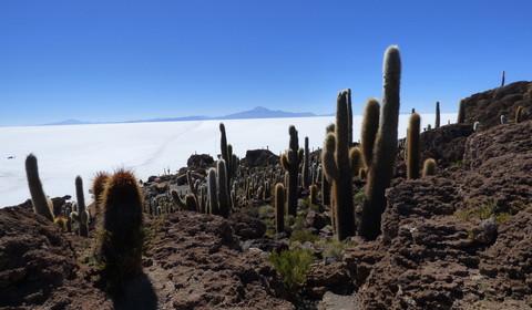 Colchani/Salar d'Uyuni - San Pedro de Quemez