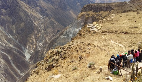 Canyon du Colca - Puno