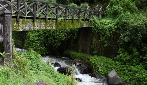 Amazonie - Puyo - Baños - Riobamba