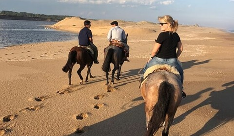 Estancia Vik : excursion à cheval & plage