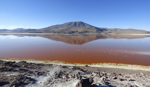 Quetana Chico - Laguna Colorada (journée de voyage)