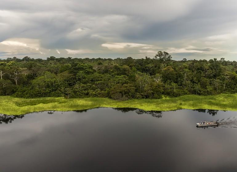 Croisière sur l'Amazone : Delfin I