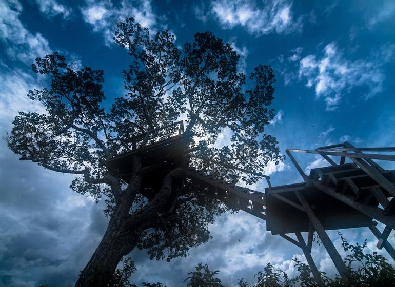 Heath River Wildlife Center