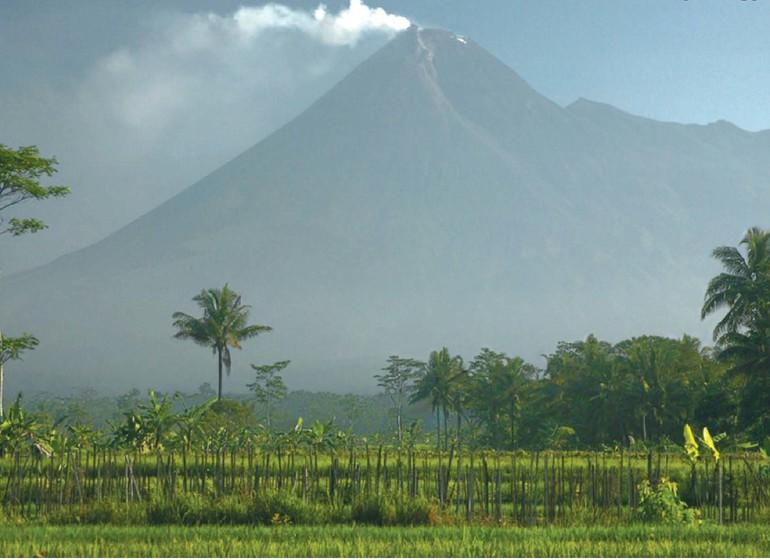 Bali par amour