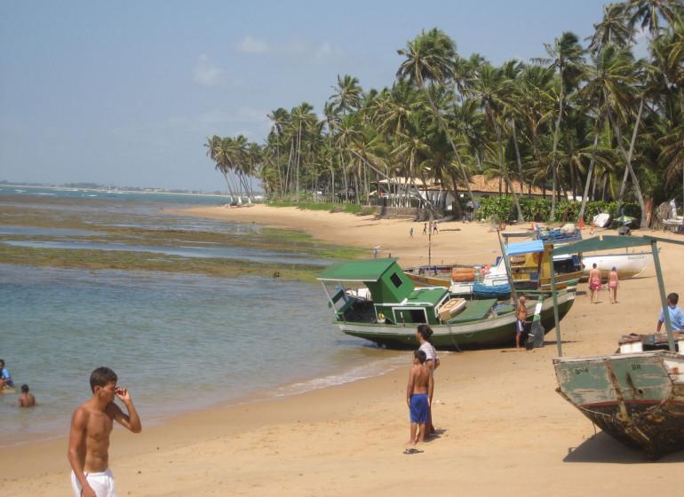 Brésil Voyage Praia do Forte plage