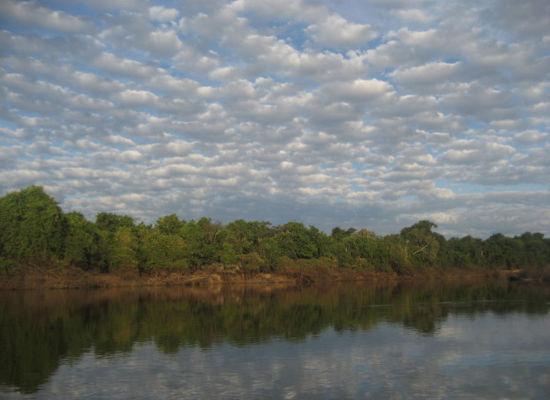 Brésil Voyage Pantanal sur l'eau