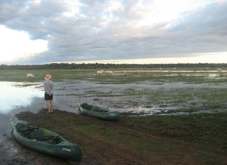 Brésil Voyage Pantanal marécages bateaux