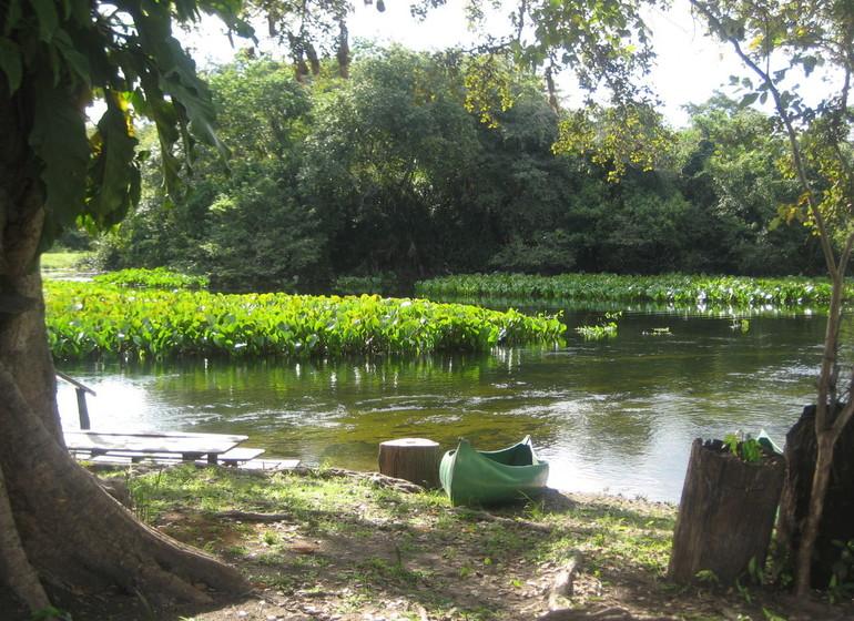Brésil Voyage Pantanal Refugio da Ilha rivière