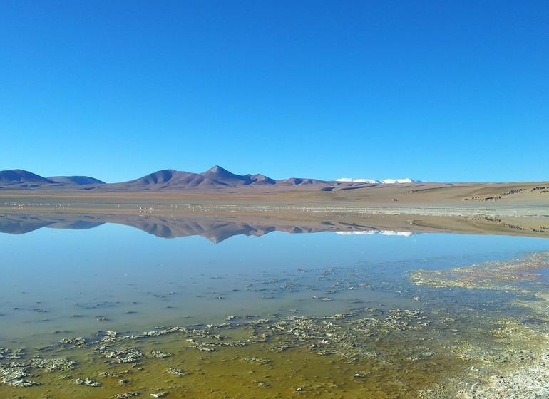 Argentine Voyage El Penon Laguna Grande