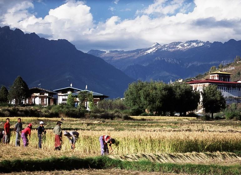 Himalayan Explorer 5