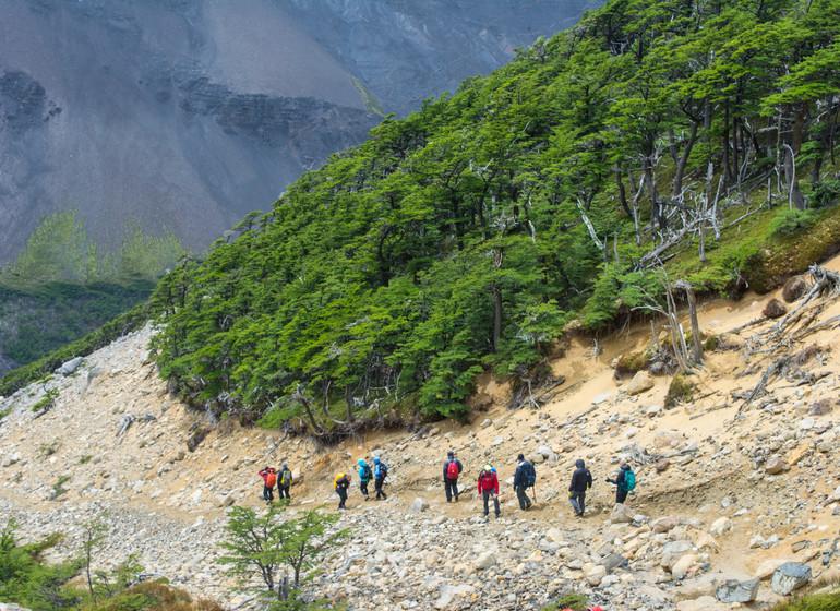 Chili Voyage Paine Trek