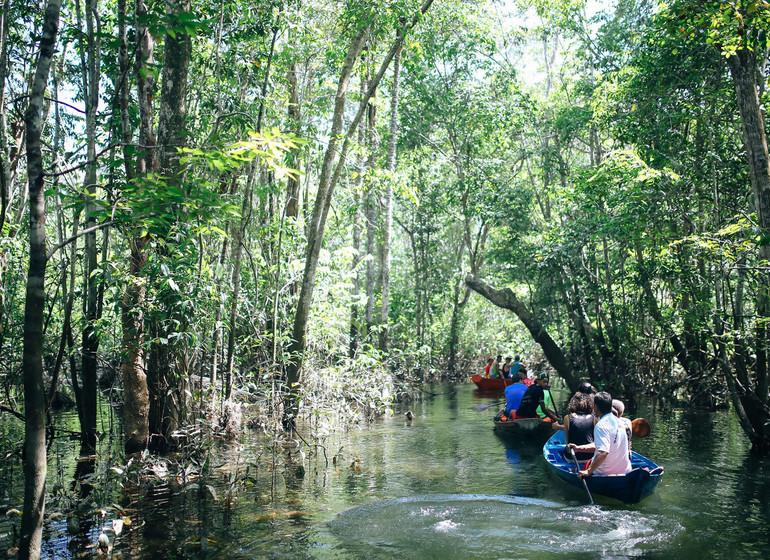 Brésil Voyage Amazon Dream excursion en canoë