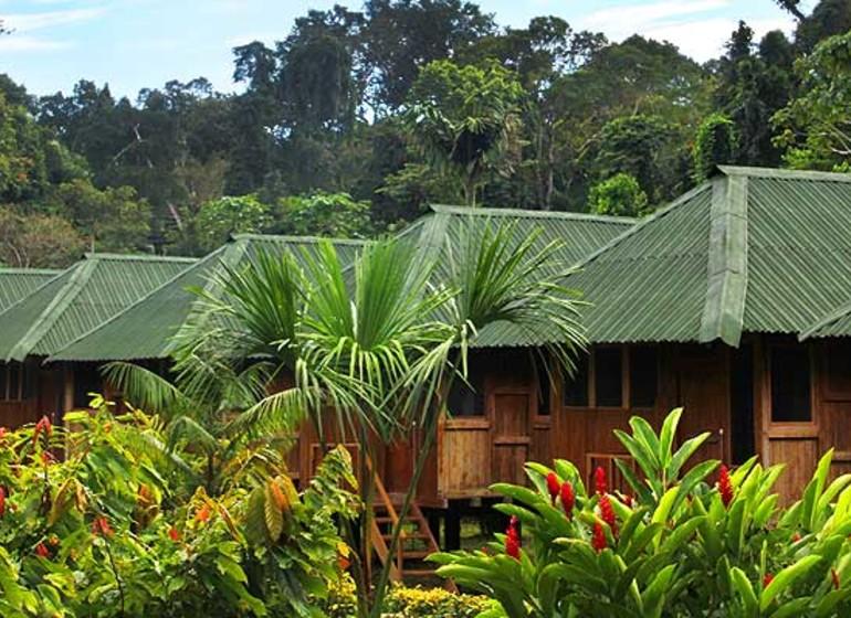Pérou Voyage Amazonia Eco Lodge
