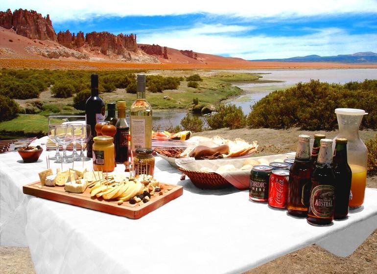 Chili Voyage Alto Atacama excursion avec piquenique