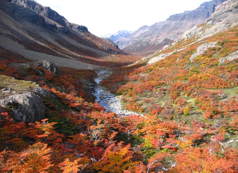 Argentine Voyage Patagonie Aguas Arriba Lodge nature automnale