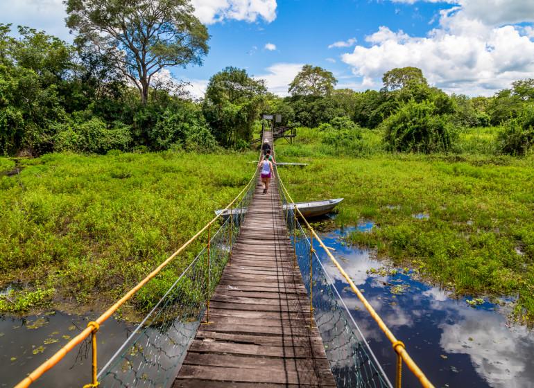 Brésil Voyage Pantanal pont suspendu
