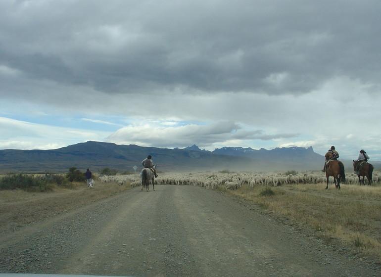 Chili Voyage à cheval