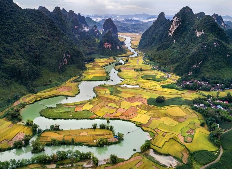 Jungle et rizières