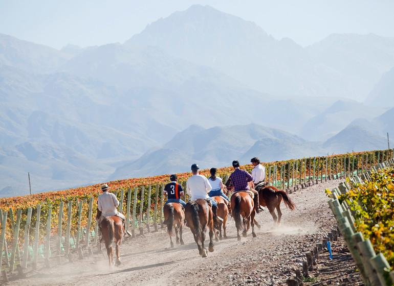 Argentine Voyage Casa de Uco à cheval