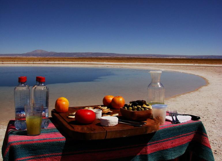 Chili Voyage TIerra Atacama excursion Laguna Cejar
