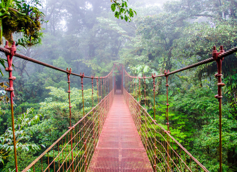 Costa Rica Voyage pont suspendu