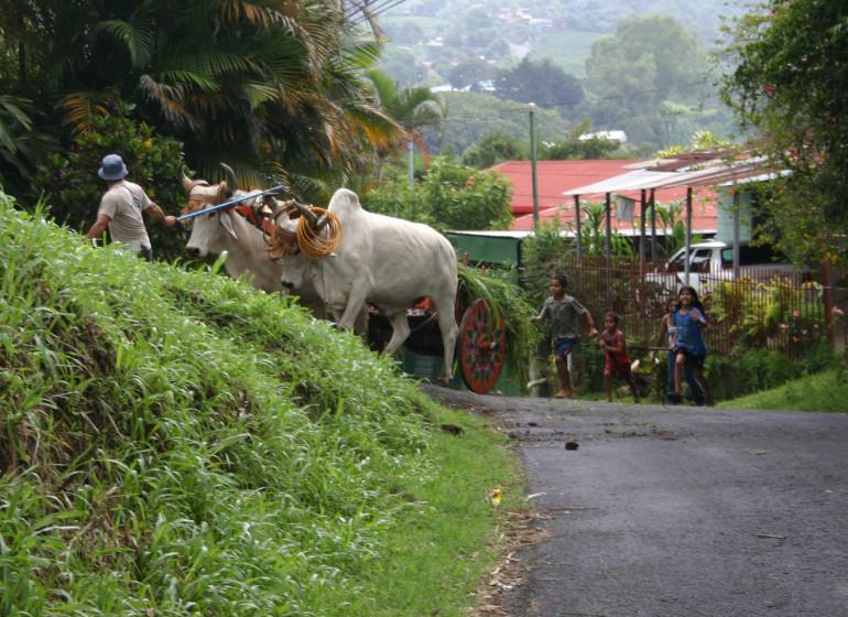 Costa Rica Voyage vie de campagne