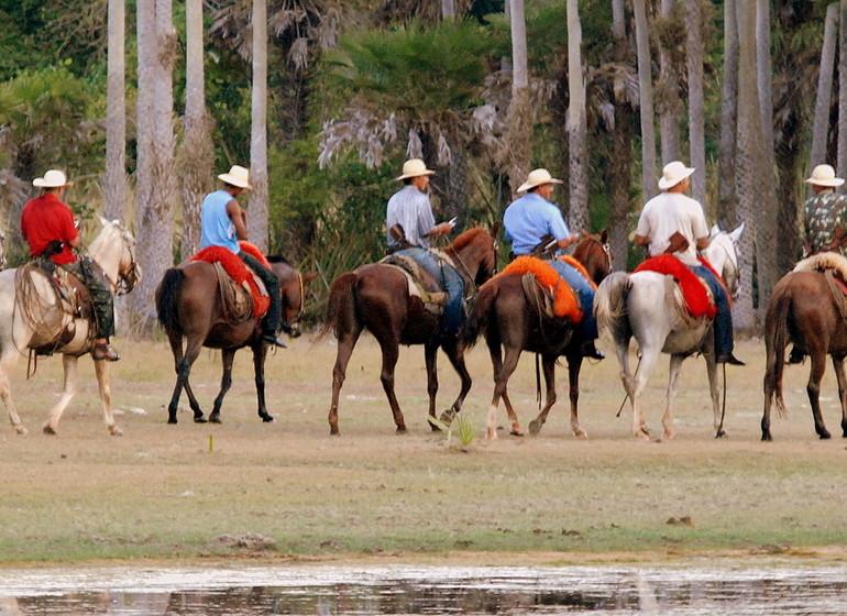 Brésil Voyage Pantanal Barranco Alto excursion à cheval