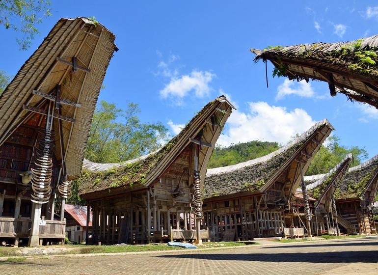 La traversée de Sulawesi